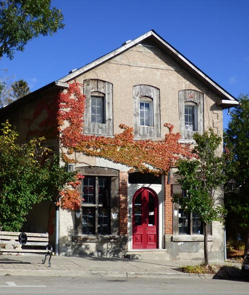 Fall_house_red_ivy_8_