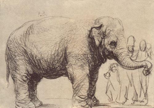 Elephant_rembrandt