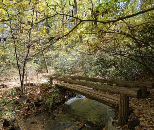 Fall_bridge_stream_5_