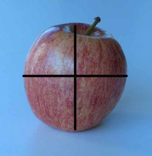 Apple-w-guidelines_