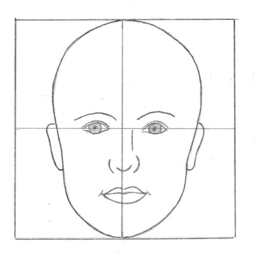 Head proportions1_Diane Cardaci